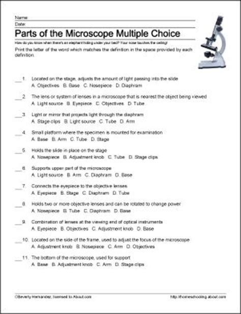 Function Of The Organelles Worksheet Biology If8765 by Biology If8765 Worksheet Answers Casademateo