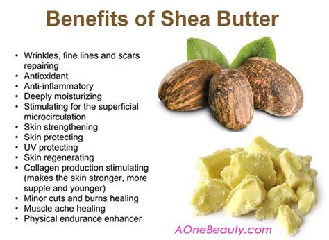 Shea Butter Benefits by 17 Best Images About Why The Hell Not On