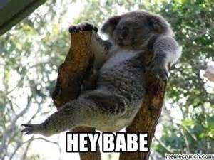 Hey Babe Meme - hey babe