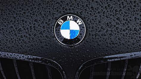 bmw logos bmw logo wallpaper