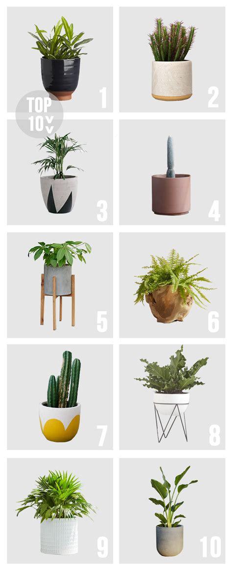 best planters top 10 pots planters amber interiors