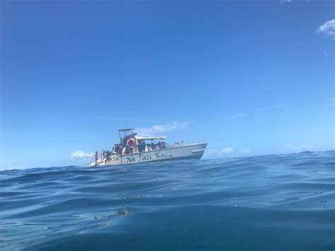 liko kauai boat tours liko kauai cruises waimea hi top tips before you go