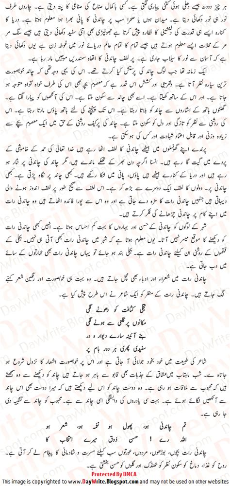 Urdu Essays Notes by Chandni Raat Urdu Essay Chandni Raat Chand Par Mazmoon With Poetry Shayari Urdu Essay Mazmoon