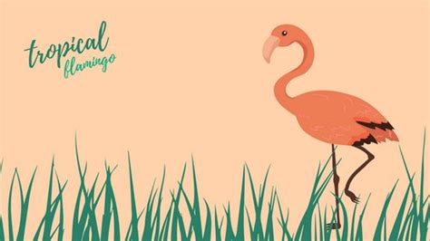 flamingo wallpaper on eastenders flamingo wallpaper impremedia net