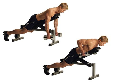 dumbbell rows without bench chest supported dumbbell row gym flow 100