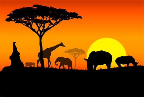 imagenes interesantes de africa image gallery imagenes de africa