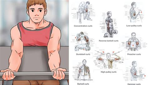 get big arms 3 exercises to build arms fast all