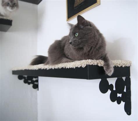 Katzen Wand Selber Bauen 1377 30 ideen f 252 r eine katzen kletterwand und coole