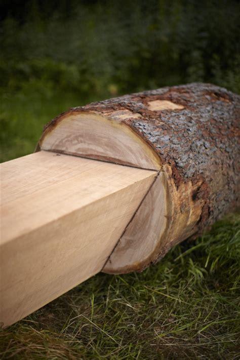 Tree Furniture   Anton Alvarez