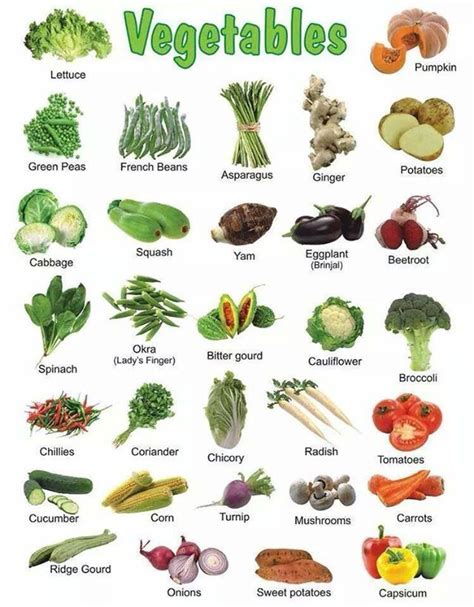 root vegetables list 1000 images about sriram on picture