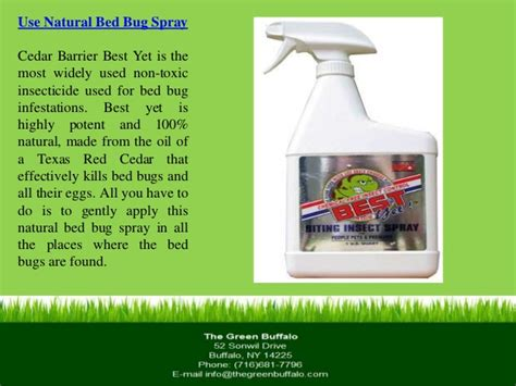 does sevin dust kill bed bugs best bed bug killer pesticides for bed bugs in mumbai