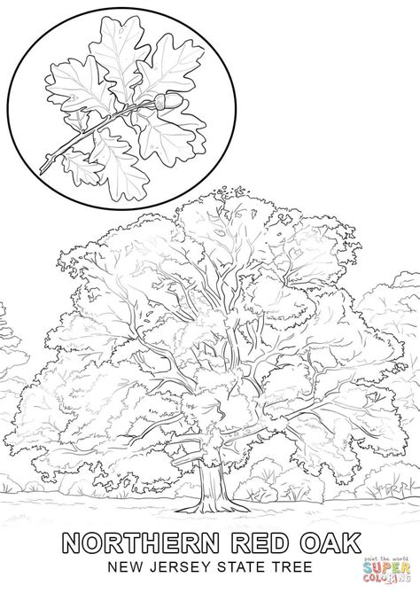 new mexico coloring pages coloring pages