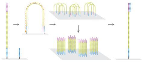 illumina technology genomics proteomics facilities ngs hiseq technology
