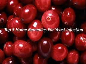 at home remedies for yeast infection top 5 home remedies for yeast infection