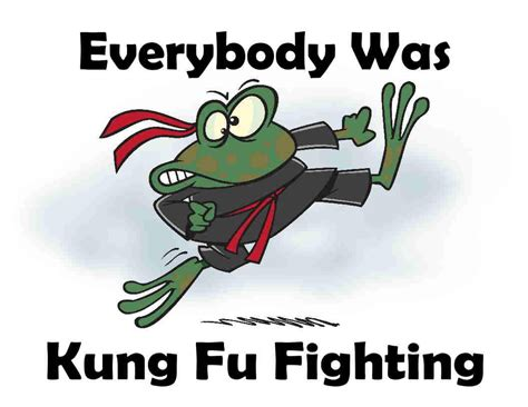 Everybody Was Kung Fu Fighting custom made t shirt everybody was kung fu fighting