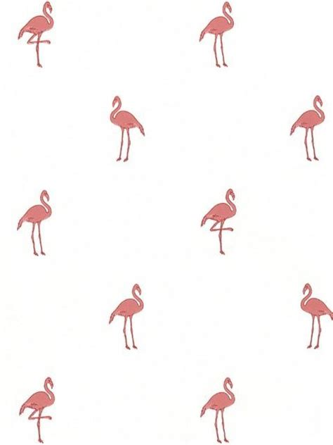 flamingo wallpaper border 14459643 destinations by the shore totalwallcovering com