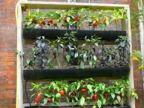 Vertical Vegetable Garden Diy Vertical Gardening Ideas Outdoortheme