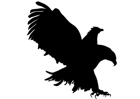 Eagle Cross Coffee eagle attack hunt 183 free image on pixabay
