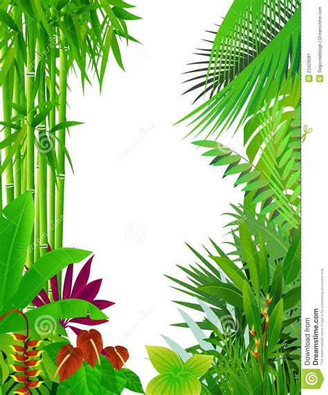 beautiful forest background stock vector image 23429081