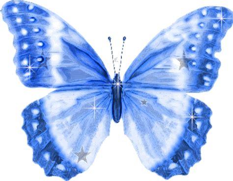 imagenes de mariposas brillantes para facebook im 225 genes de mariposas grandes alas brillantes