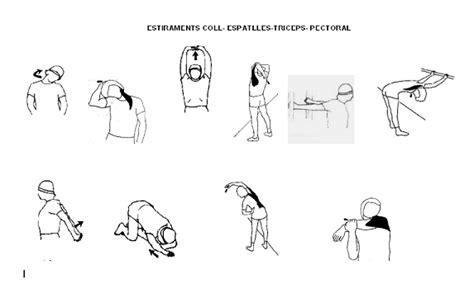 estiramientos de cadenas musculares gomariz pdf estiraments