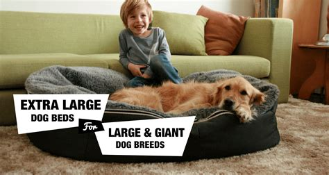 xl dog bed 6 extra large dog beds for xl xxl dog breeds reviewed