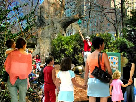 e63 themes tree the acorn theater in the childrens zoo