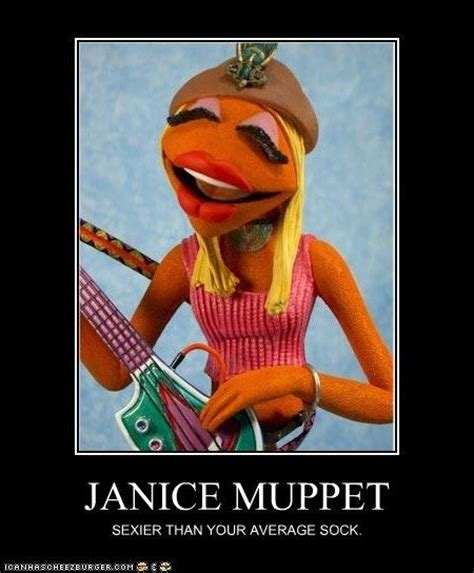 Muppet Memes - janice muppet funny and pictures