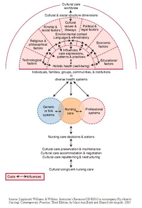 cultural care diversity and universality culture care diversity and universality the sunrise