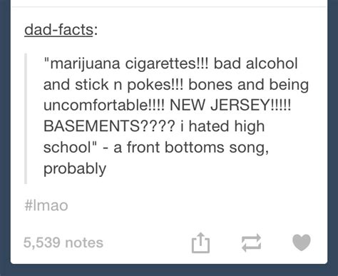what thinks of the front bottoms thefrontbottoms