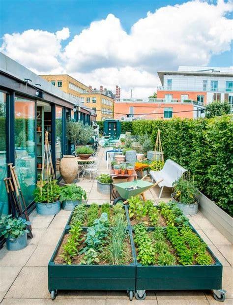 roof garden plants best 25 roof gardens ideas on pinterest urban gardening