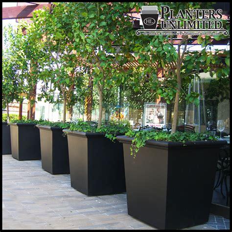 square fiberglass planters commercial sized planters
