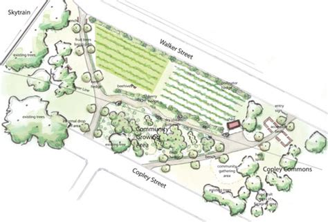conceptual plan for copley community orchard