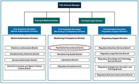Post Market Surveillance Report Template Presentation Risk Management Plans An Overview