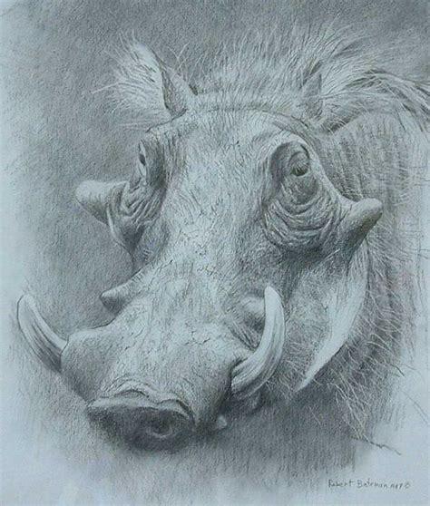 drawing for sale robert bateman art for sale