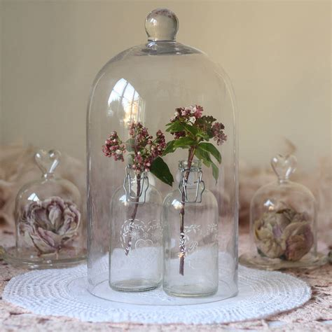 shopping glass cloches amp bell jars thorn