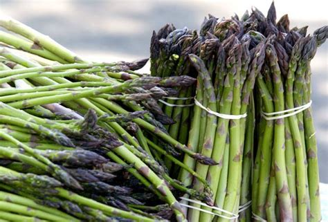 food notes asparagus season in n j cinco de mayo dip recipe nj com