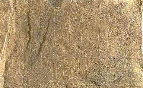 rosetta stone old norse mysterious viking code j 246 tunvillur deciphered by norwegian