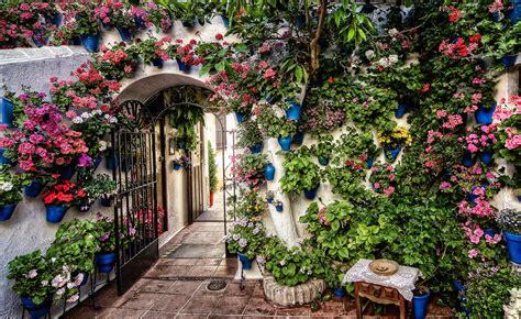 patios cordobeses los patios de c 243 rdoba arte y dem 225 s historias por b 225 rbara
