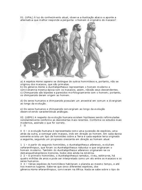 EVOLUÇÃO HUMANA.docx | Homo | Homo Sapiens
