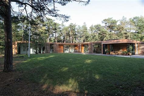 modern one storey residence surrounded by pine timber