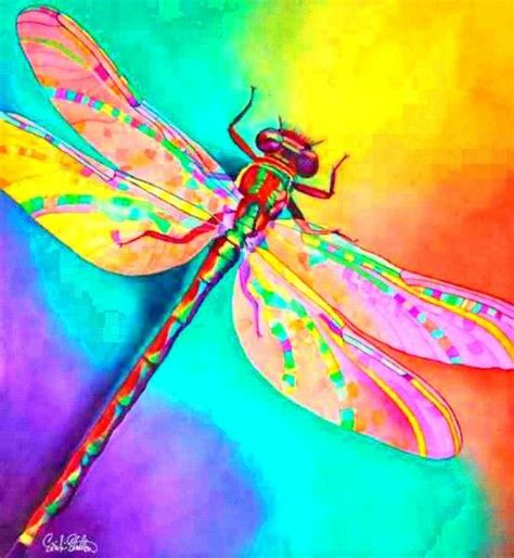 tattoo gallery belleview fl 322 best images about dragonflies on pinterest ceiling