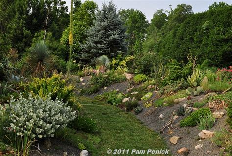 Southwest Gardener by Visit To Plant Delights Nursery Southwestern Garden