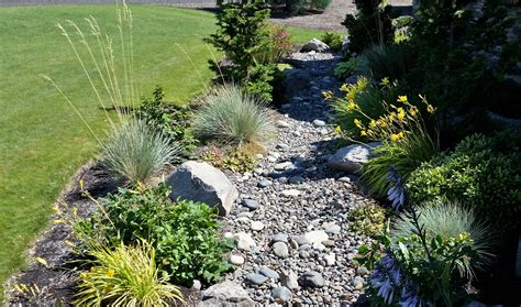dry creek bed for drainage solving water problems with dry creek beds