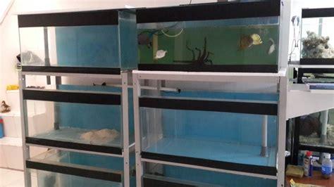 Jual Kolam Terpal Siap Pakai Jakarta dijual murah 4 set akuarium berserta raknya dan ada pipa