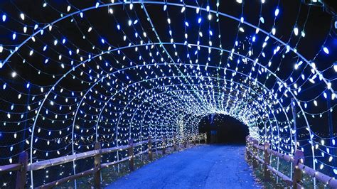 lehigh valley zoo light lehigh valley 5 great things to do