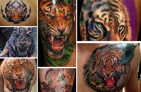 bengal tiger tattoo bengal tiger traditional www imgkid the