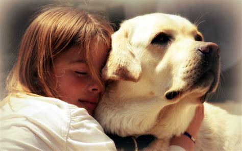 hug puppy hugs wallpapers and images wallpapers pictures photos