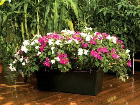 earthbox container gardening system earthbox flower and vegetable container gardening system
