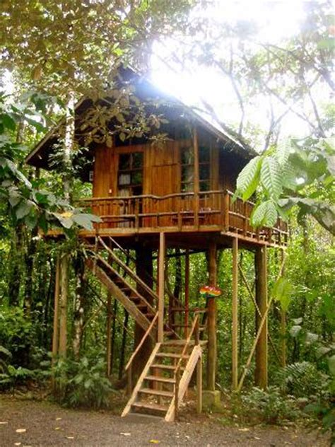 costa rica tree house treehouse picture of tree houses hotel costa rica la fortuna de san carlos